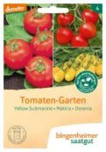 Tomaten Garten