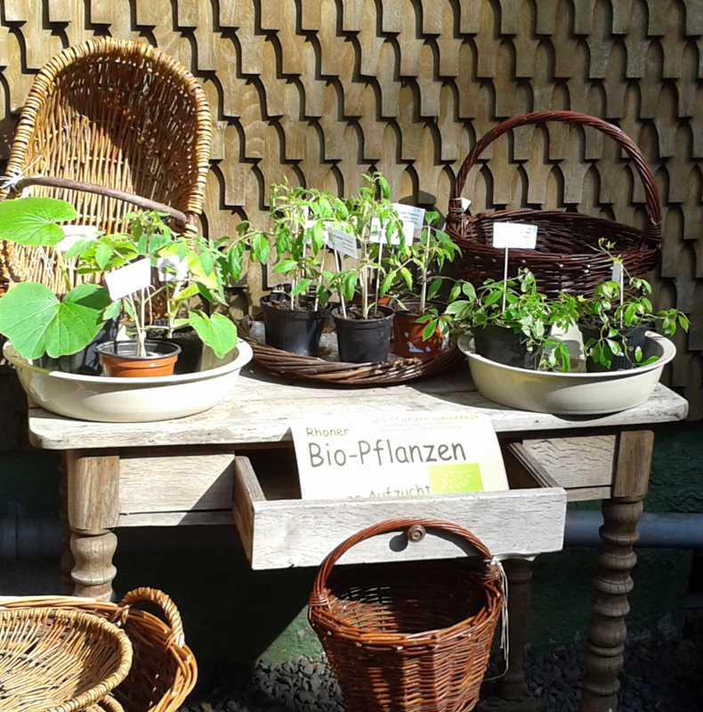 Bio_Pflanzenangebot_2017
